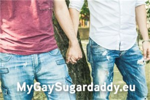 Gay Partner online finden
